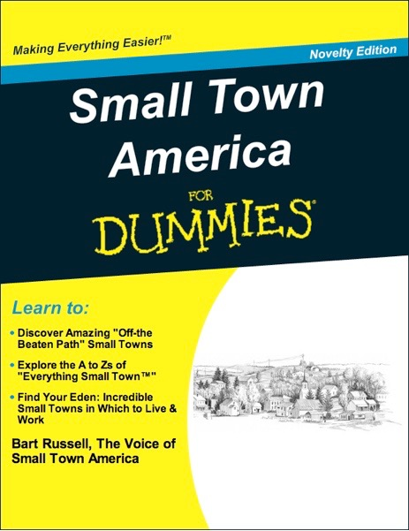 Small Town America for Dummies
